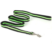 Bungee Training Dog Lead - Omnia