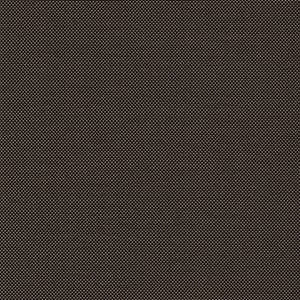 Fabric image: Clear View:  Traditional - Nordic Midnight Tan