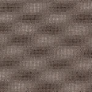 Fabric image: Clear View:  Traditional - Nordic Ash Tan