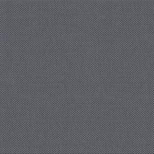 Fabric image: Clear View:  Traditional - Nordic Black Pearl