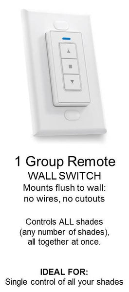 1 group Wall Switch