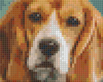 1 Baseplate kit - Beagle