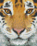 1 Baseplate kit - Tiger Face