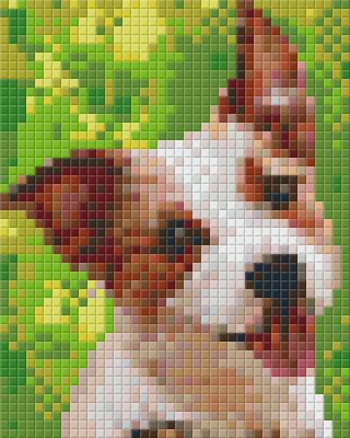 1 Baseplate kit - Jack Russell