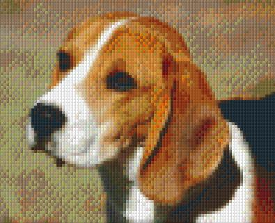 4 Baseplate kit - Beagle