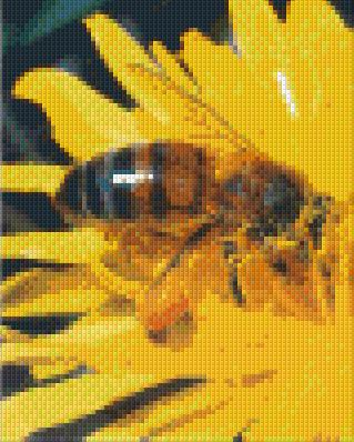 4 Baseplate kit - Honey Bee