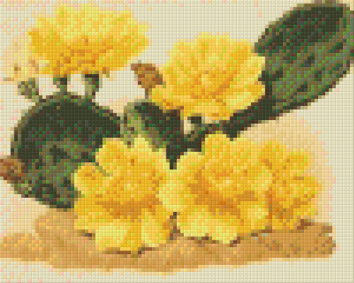 4 Baseplate kit - Cactus with Yellow Flowers