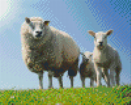 4 Baseplate kit - Sheep