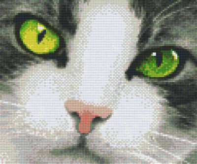 6 Baseplate kit - Green Eyed Cat