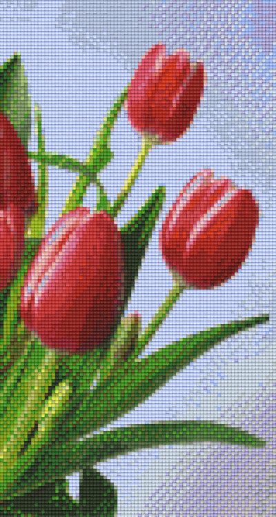 6 Baseplate kit - Red Tulips