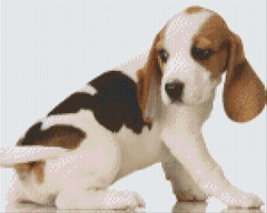 9 Baseplate kit - Beagle