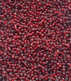Dark Red Glass Seed Beads Transparent Lined