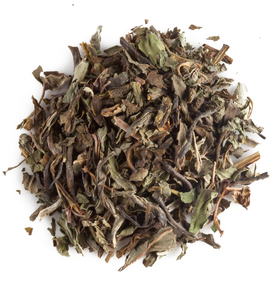 Mountain Mint Organic Green Tea