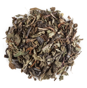 Bright Mint Organic Green Tea