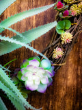Succulent Oval Grapevine