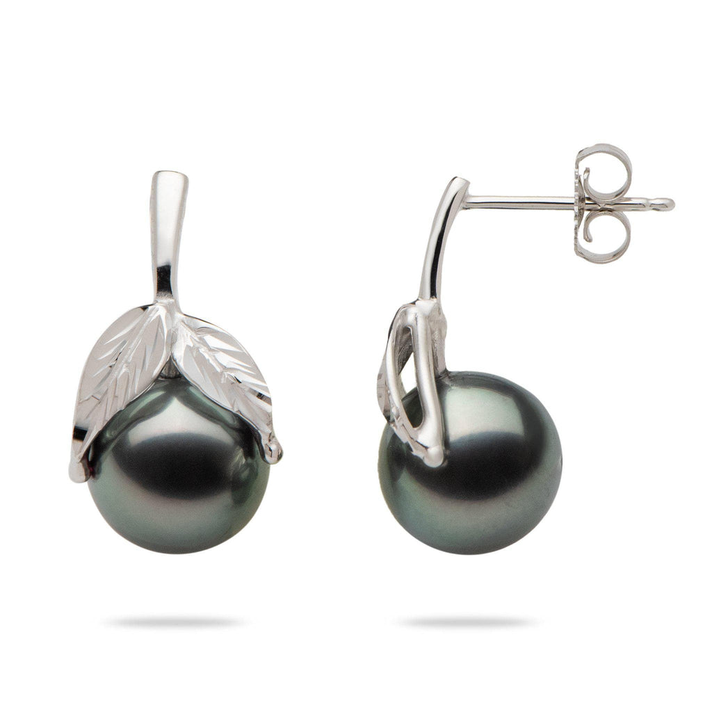 Tahitian Black Pearl Maile Earrings in 14K White Gold (9-10mm) - Maui Divers Jewelry