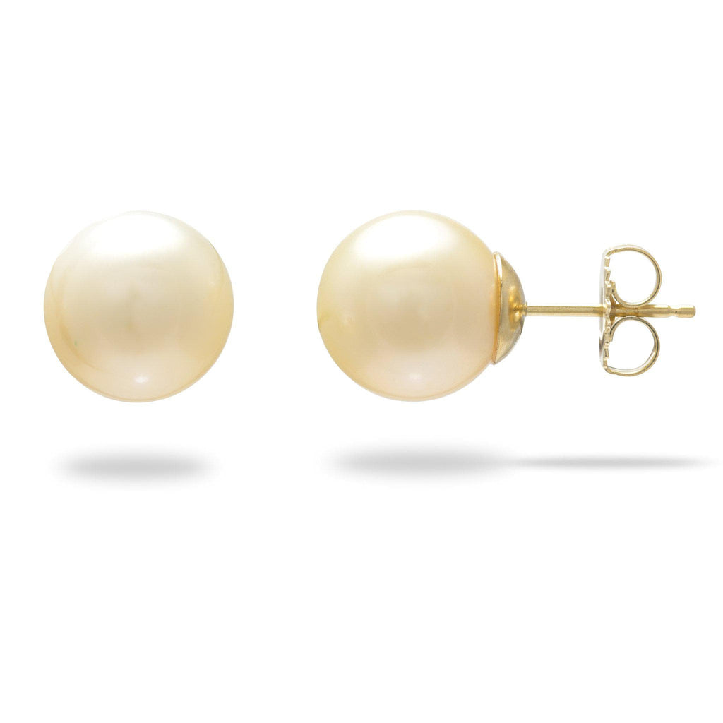 Cream South Sea Pearl Stud Earrings in 14K Yellow Gold
