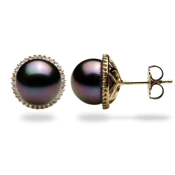 Tahitian Black Pearl Earrings in Gold (10-11mm)-Maui Divers Jewelry