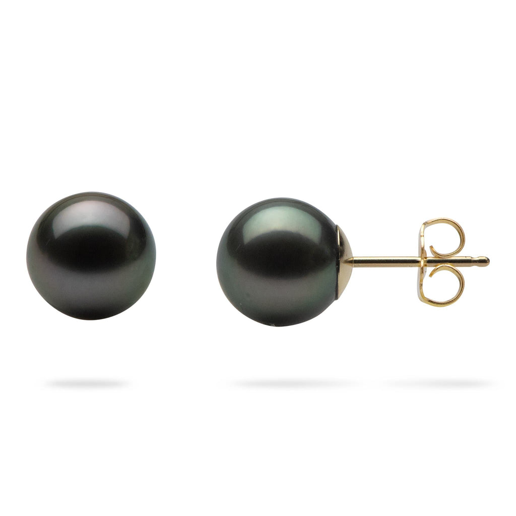 Tahitian Black Pearl (8-9mm) Earrings in 14K Yellow Gold
