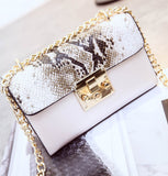 Snake and Leather Crossbody Bag