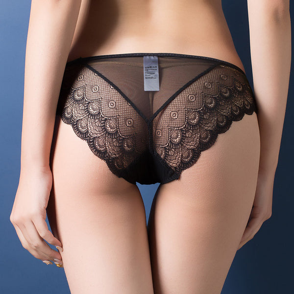 All Sheer Lace Trimmed Cheeky Panty