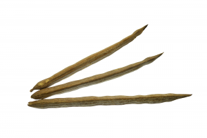 Cultivator Natural Product Pvt. Ltd.|Moringa Pods