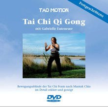 Tai Chi Qigong moderate and advanced level (DVD 2)