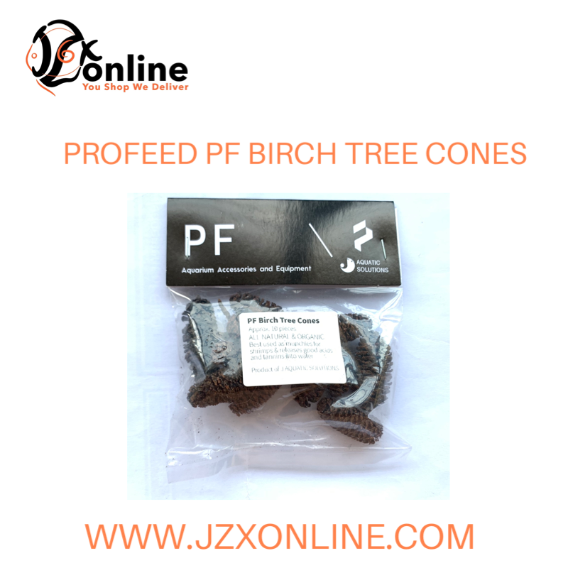 PROFEED PF Birch Tree Cones (~10pieces)