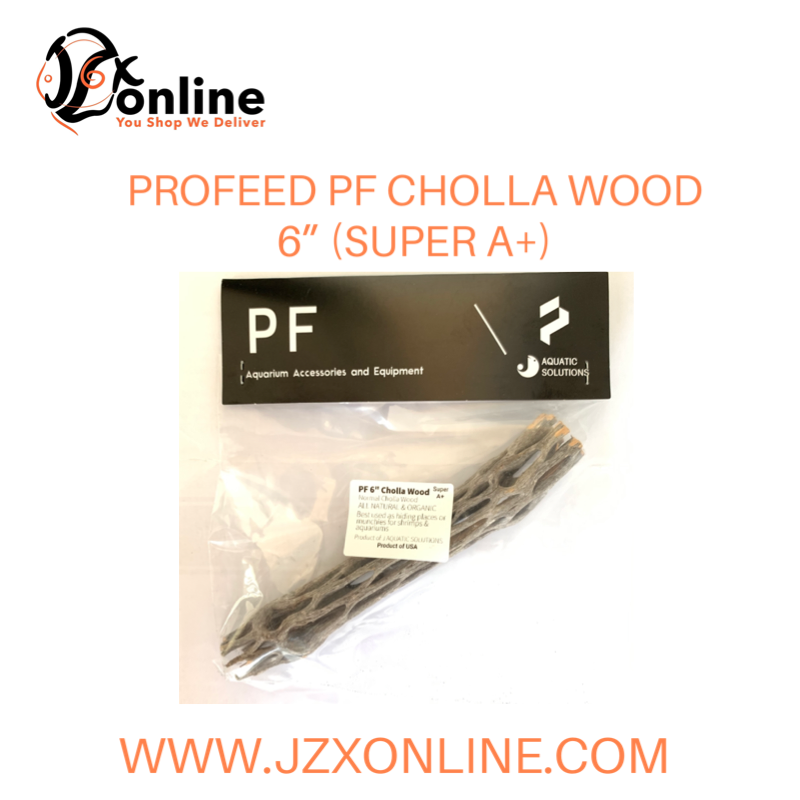 "PROFEED PF Cholla Wood 6"" (Grade Super A+)"