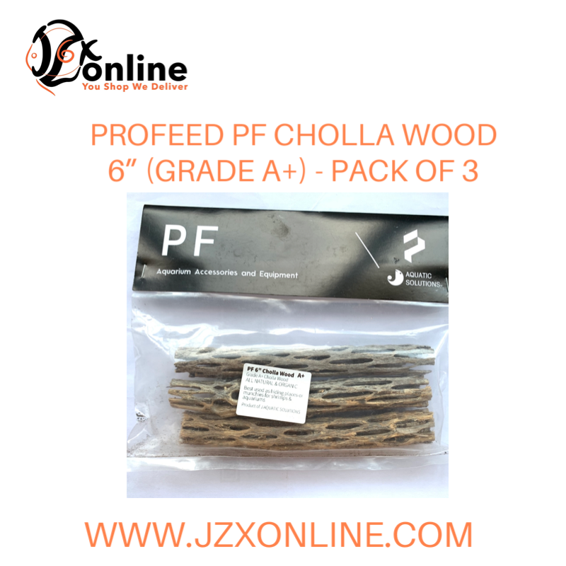 "PROFEED PF Cholla Wood 6"" (Grade A+) - Pack of 3"