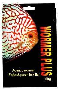 WORMER PLUS 20g (For Tropical Fish Flukes & Parasite)