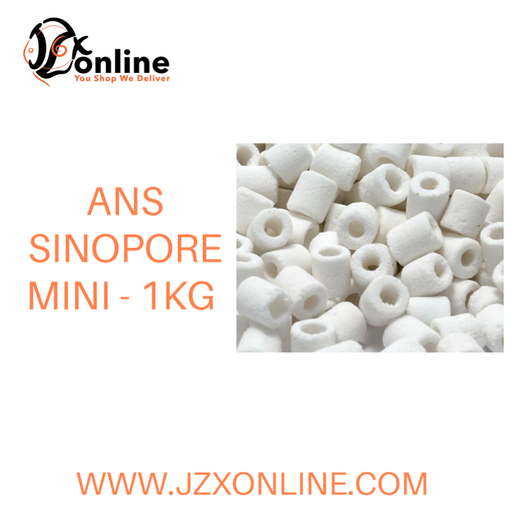 ANS Sinopore Mini - 1kg (Filter Media)