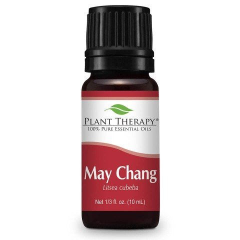 Essential Oil - Plant Therapy May Chang Essential Oil