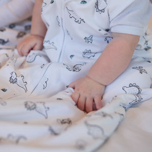 100% Cotton Dinosaur Summer Baby Sleeping Bag 6-20 months - Babes & Kids