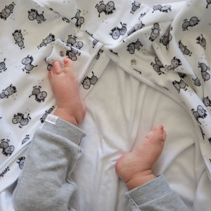 Zany Zebra Baby Sleeping Bad 100% Cotton - Babes & Kids