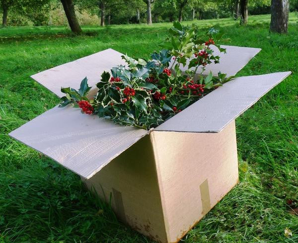 Wholesale Holly and Wreaths