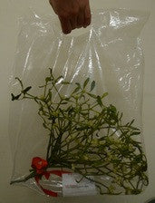 Mistletoe Carry-Away Bags (Just bags no mistletoe)