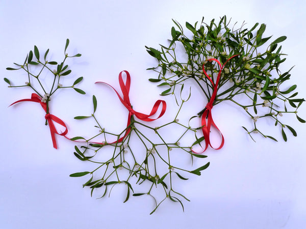 Bubble Packed Mistletoe Favours