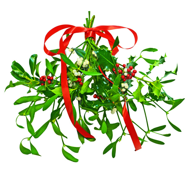 Mistletoe & Holly Bunch