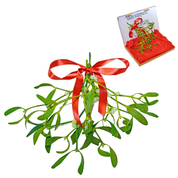 Mini Mistletoe Bunch