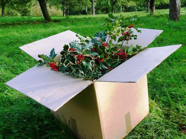 Wholesale Holly Mix