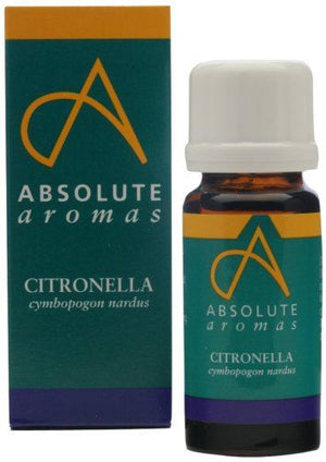 Absolute Aromas Citronella Oil 10 ML