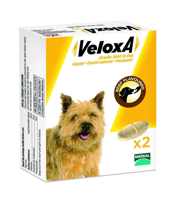 Veloxa dog wormer chewable tablets 2 pack
