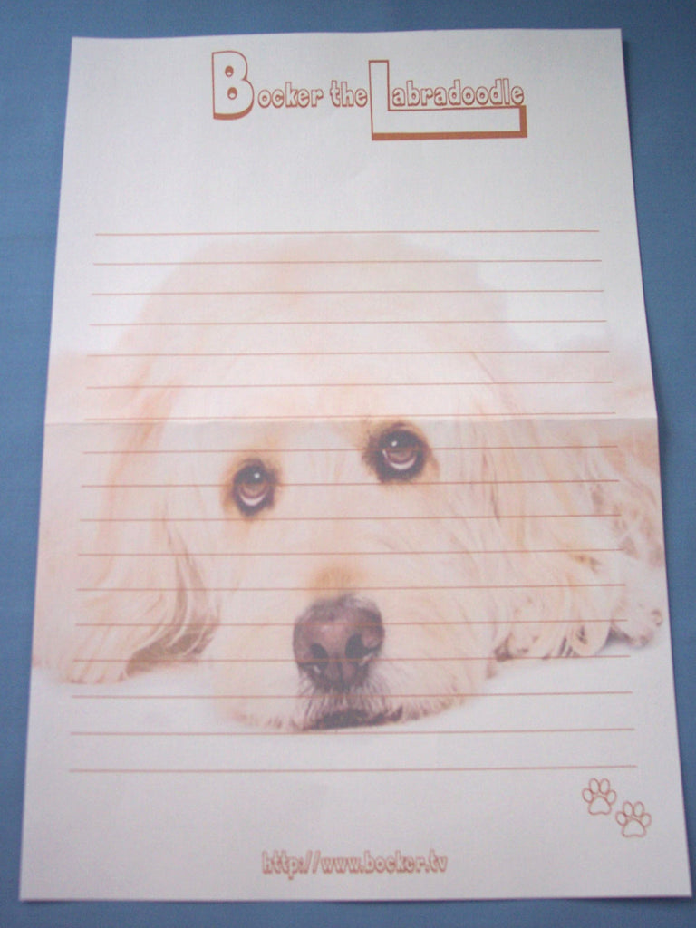 Bocker the Labradoodle- Stationery