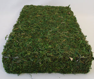 Rectangular Moss Base