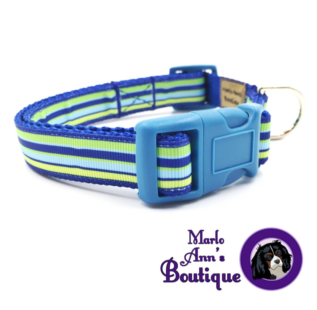 Shades of Summer Dog Collar