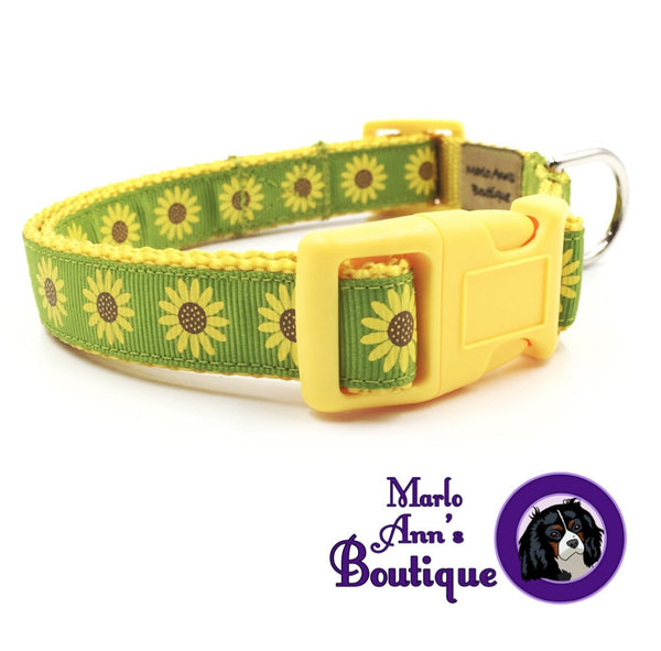 Summer Sunflower Dog Collar