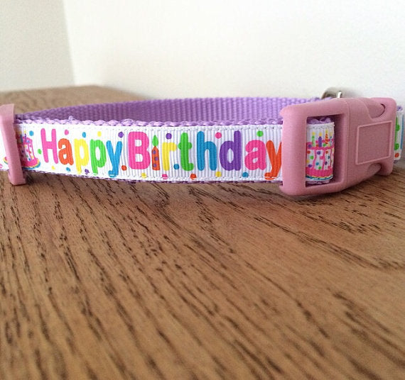 Purple Happy Birthday Dog Collar