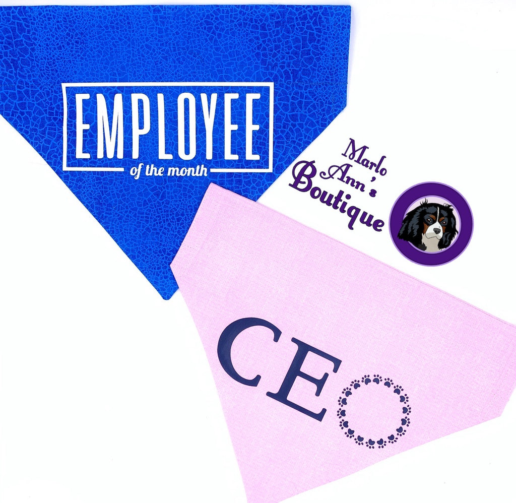 CEO & Employee of the Month Bandanas