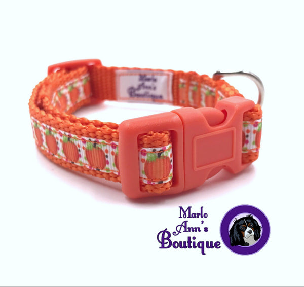 XS / Puppy Pumpkin Collar
